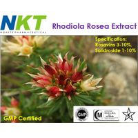 Rhodiola Rosea Extract (GMP Certified)