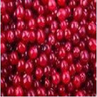 Cranberry extract  Proanthocyanidins 25%-50% thumbnail image