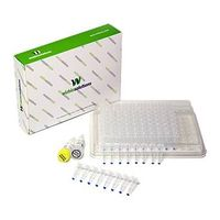 Molecular Detection Kit