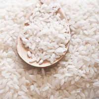 STICKY RICE - GLUTINOUS ROUND RICE-BEST SELLING - EMAIL: SALES4 AT VINARICE DOT VN