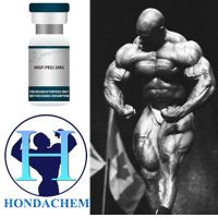 PEG MGF Bodybuilding Supplements Peptides Pegylated MGF PEG-MGF/High Quality PEG-MGF