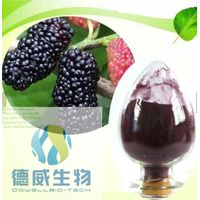 Botanical Extract Mulberry fruit P.E.