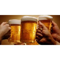 Hot Beer Deals For Import/Export