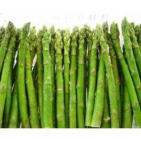 Frozen green asparagus spears