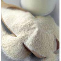 Arachidonic Acid Powder Cas No.: 506-32-1