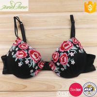 Beautiful mesh bra push up gathered underwear flower embroidery lace sexy bra