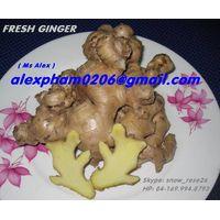 GINGER/ FRESH GINGER/ DRY GINGER SLICES/ GINGER POWDER in SKYPE snow_rose26