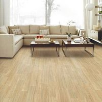 COLORLON PVC Flooring - Roll type