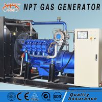 Hot sale 187.5kVA 150 kw biomass generator price
