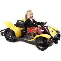 Pacer Panther electric go-karts