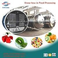 fruit vegetable freeze dryer