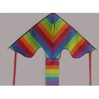 rainbow delta kite