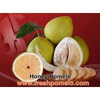 fruit juice,fresh fruits thumbnail image