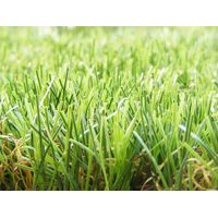 artificial turf/synthetic grass/artificial lawn