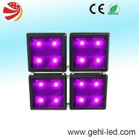 hot sale cob indoor grow light for plant