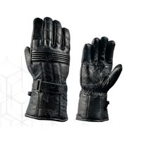 DSI snow leather gloves