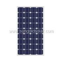 solar panel(SGM-60W)