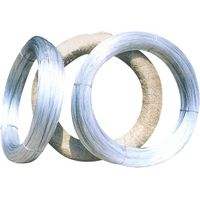 China largest factory supply Electro galvanized iron wire