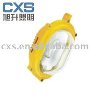 CBFC8120-150 CBFC8120-35 Inside explosion-proof floodlight,explosion-proof lamp,lamp