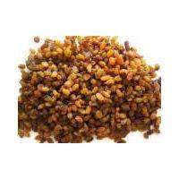 Golden raisin thumbnail image
