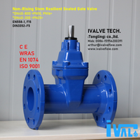 DIN F5 RESILIENT SEATED GATE VALVE, (DN40-800)