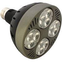 New Design 25W-35W LED Par30 lamp