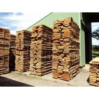 beech unedged lumber