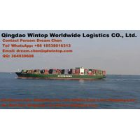 Sea Freight Forwarder Shipping Agency from Chine Port to Any Port