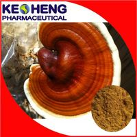 100% Natural herbal reishi extract