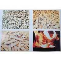 best quality biomass briquette press machine made in China thumbnail image