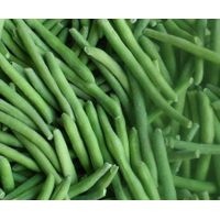 frozen vegetables frozen green bean supply from factory in China thumbnail image