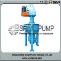 Vertical Mineral Sanding Handling Water Treatment Centrifugal Froth Pump thumbnail image