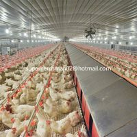 poultry farm equipment for breeder thumbnail image