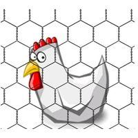 Hexagonal wire mesh netting chicken wire fence rolls