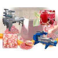 pomegranate juice processing line