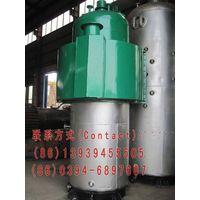 LSB coal gasification environmental boiler