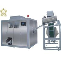 Full automatic blowing machine--MJ-BX-S2, blow molding machine