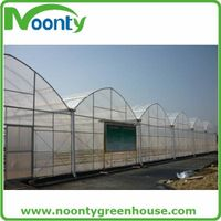 Agriculture Multi-span Film Greenhouse