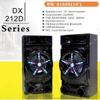 DX-212D high power party speaker