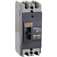 CEZC100A 2P Moulded Case Circuit Breaker(MCCB) thumbnail image