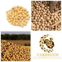 Soybeans thumbnail image