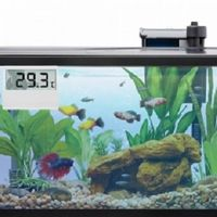 Electronic Digital Fish Tank Thermometer with LCE Display-2020 thumbnail image