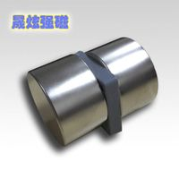 Vietnam Strong Neodymium NdFeB Magnets Rare Earth Magnet for motor