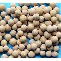 13X Molecular Sieves thumbnail image