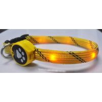 hot best-selling LED dog training collar