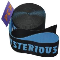 Eco-Friendly High Tenacity Feature Non-slip Elastic Webbing Band
