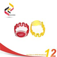 Plastic RFID Wristband Bracelets for Water Park