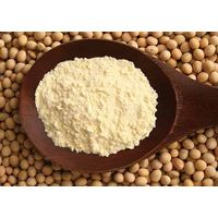 Isolated Soy Protein china