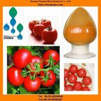Tomato extract with Lycopene, lycopene antioxidant capsules, Lycopene powder, Lycopene oil thumbnail image
