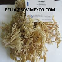OFFER OF SEAWEED - E. COTTONII / SEAMOSS FROM VIET NAM